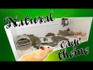 NATURAL Hamster Cage Theme. Hamster cage tour